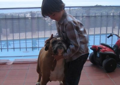 Berrar de seguridad para niños y mascotas