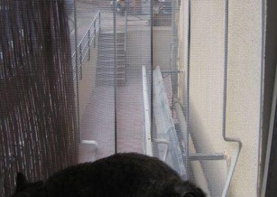 Disfrutar del balcón en modo seguro
