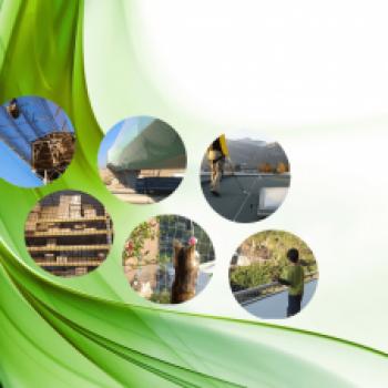 Sistemas de seguridad para industria y para particulares